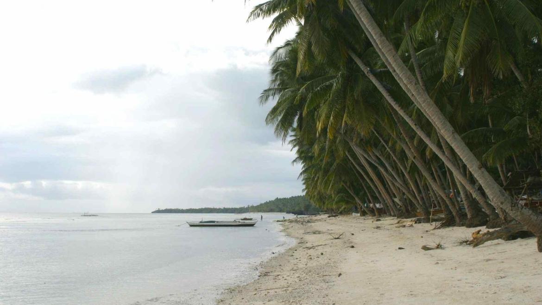 An island coast during the wet season