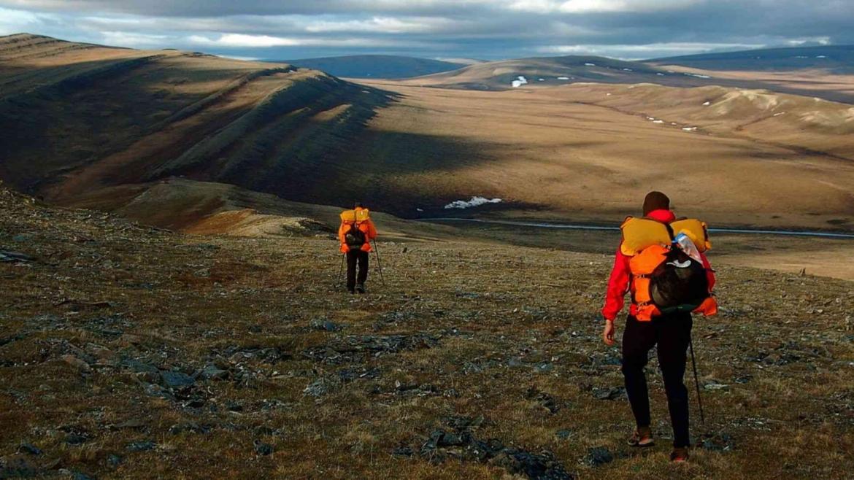 Exploring the tundra