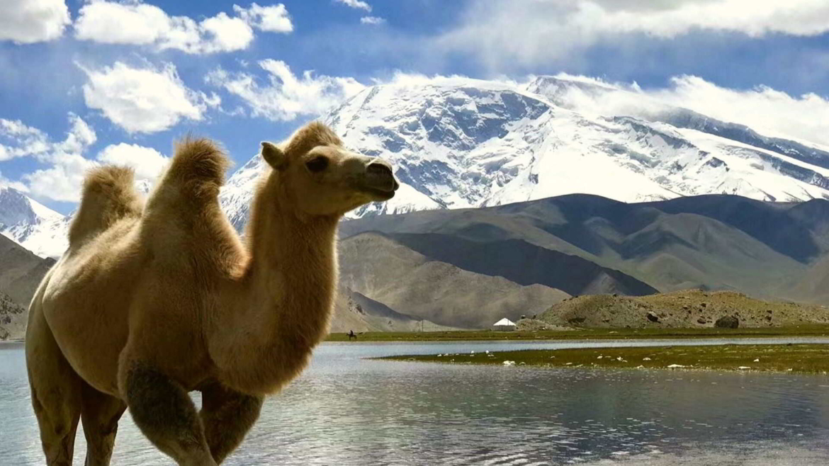 In the high mountain- Pamir