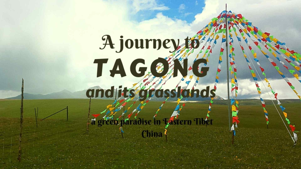 A journey to Tagong and its grasslands, a green paradise in Eastern Tibet, China